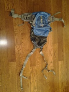 Kelty Cardinal Lumbar Pack (converted to day/back pack)