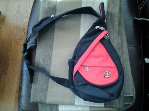 "Swiss Gear ""Bota"" style bag"