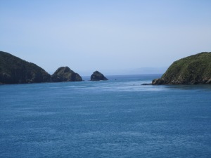 Coast line of S. Island