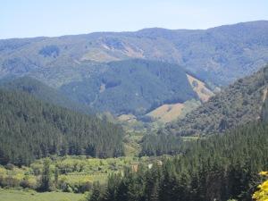 Another shot of Abel Tasman National Park