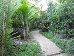 Entrance to Grove Scenic Reserve