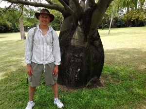 A famous Boab tree. I saw a much bigger and wider tree at the ANZAC Memorial in Brisbane a couple of days ago, but it was raining hard and I couldn't take a photo. They store water, which is used not only by the tree, but animals and insects as well during drought conditions.