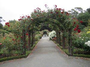 I wish I had this rose tressel for the garden I had when I lived in the mountains.