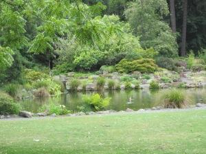Avon river that runs through Christchurch.