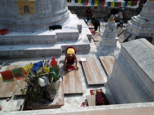 Buddhist worshipers praying.