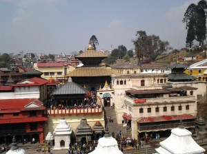 Pashupatinath viewed from across the river on a hill which overlooks the temple.