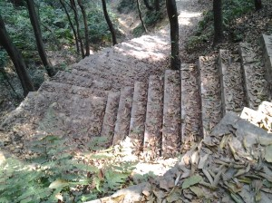 """This is an unusual feature of the trail - almost the entire length is constructed of concrete stairs. Ursina and I agreed this must have been """"back breaking"""" work to accomplish, as the trail grade is almost completely vertical, without too many switchbacks. In the United States and Switzerland, trails are almost always constructed of the natural resources found at each park."""