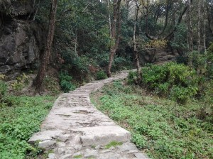 After a kilometer or so, you are left with nature and of course, the path made of concrete stairs.