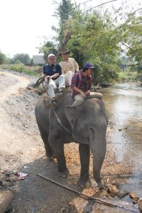 Klaus and I on our elephant.