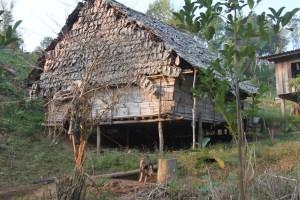 Village hut.