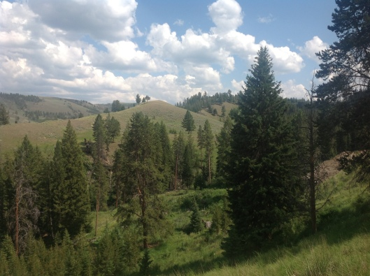 Valley and hills at Yellowstone.