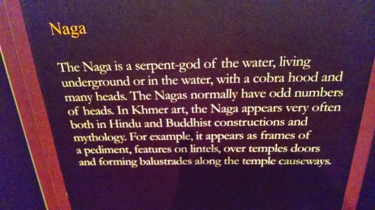 The Naga description.