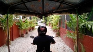 Tuk tuk driver taking me to the Artisans Angkor workshop. My hotel is hidden in a residential area of Siem Reap. Appropriately, it is nice and quiet, which I appreciated.