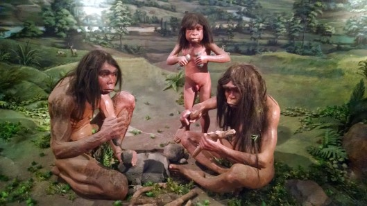 The Prehistoric Age has long time frame, beginning from the presence of man until the emergence of writing differs in every part of the world. From the discovery of ancient human fossils in Indonesia, it is estimated that man lived here around one million years ago. Writing emerged before the 4th century. Paleontology, the study of Prehistoric periods, explains the lifestyles of prehistoric civilizations through research into their fossilized remains and the artifacts that they made. The Neolithic era emerged gradually between 2500 BC and 1500 BC when the vast number of people emigrated from the Asian mainland to the Malaysian peninsula, then to the island of Indonesia by sea. The immigrants built dwellings, planted rice on dry land or in irrigated fields and raised cattle. They formed agrarian village communities. This settled lifestyle enabled men to develop their skills in many areas, thus establishing a specific Neolithic culture, examples of which can be seen in this room.