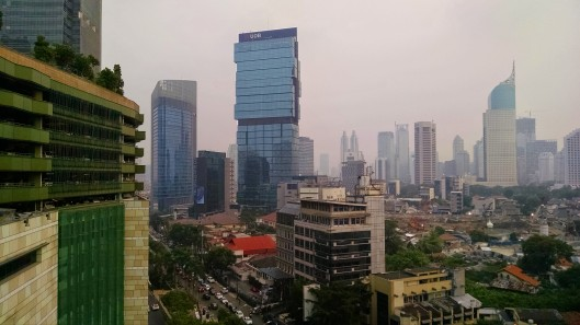 More shots of the city skyline. Smog was pretty heavy in the city.